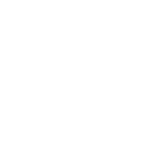 Project Rhino